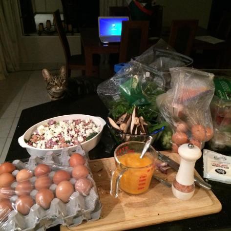 Cat Frittata